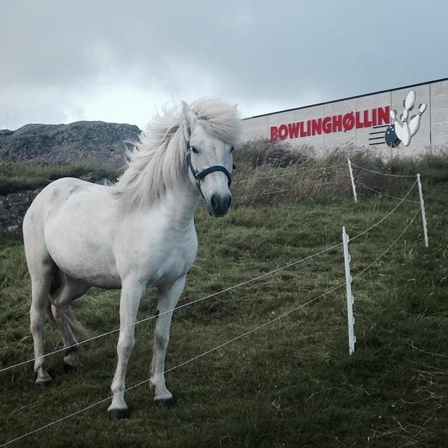 reportagebygettyimages:  in Torshavn, Faroe Islands.