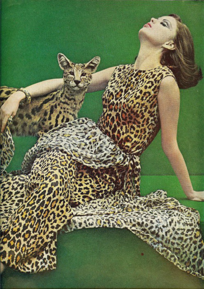 lulufrost:  Vintage Photo Friday  There's no such thing as too much leopard