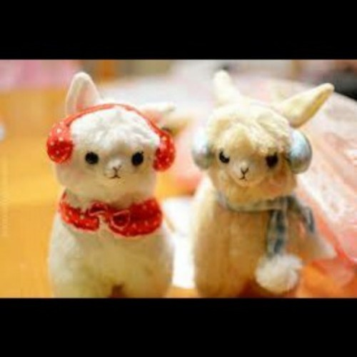Wanting these :D  #Alpacas #Super #Cute #I #want