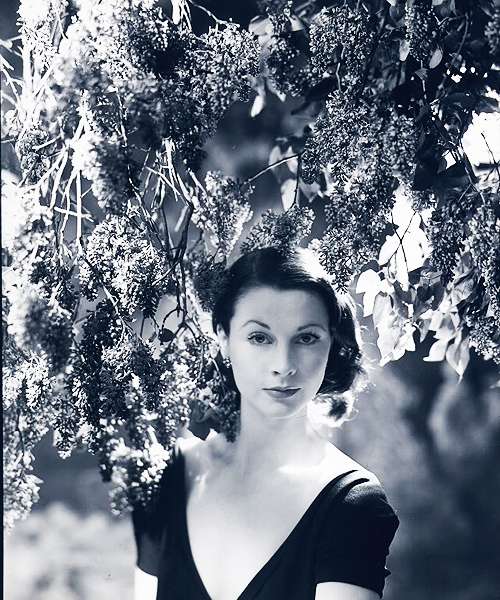 Vivien Leigh by Cecil Beaton