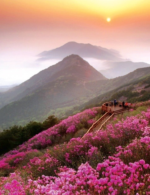 beautiful-world-out-there:  Sunset, Cheonju-san, Korea