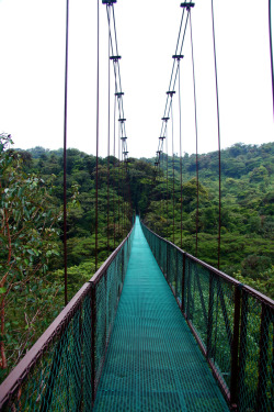 touchdisky:  Monteverde Bridge, Costa Rica by ken berg