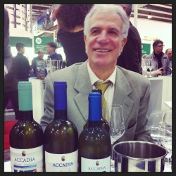 The timeless Verdicchios from Accadia. #wine #organic #vinitaly #italy