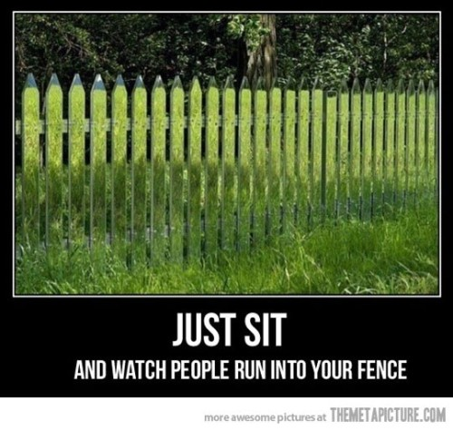 The invisible fence