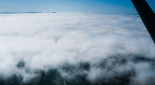 Here is a better view of the marine layer. San Francisco and the Golden Gate Bride are underneath the clouds, which ended abruptly over Tiburon.