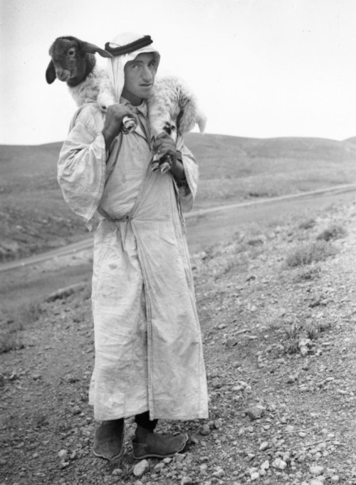 fuati:  A Bedouin shepherd carrying a young lamb on the hills of Palestine. 12th February 1938 (Photo by Fox Photos/Getty Images).