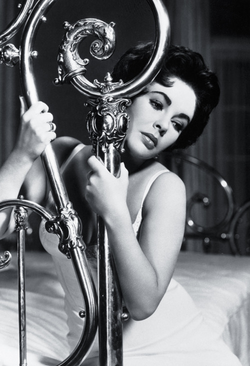 vimandvigour:  Elizabeth Taylor in a promotional still for 'Cat on a Hot Tin Roof' (1958)