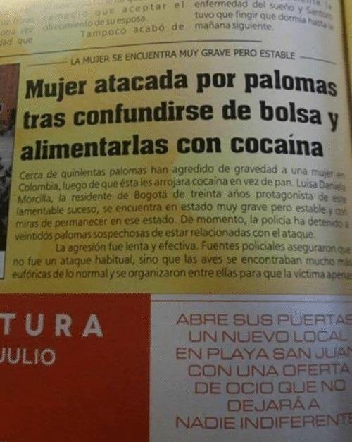 migas cocaína animales palomas