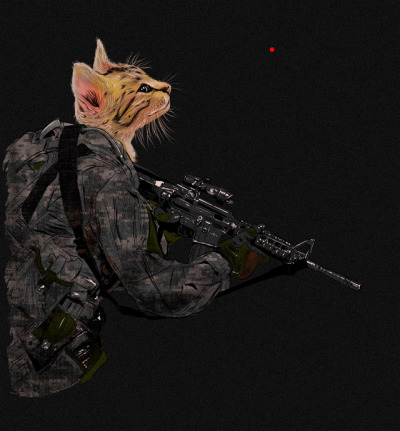 AIM Cats are always curious about the red dot. They cannot be sniper. http://www.threadless.com/threadless/aim-2/
