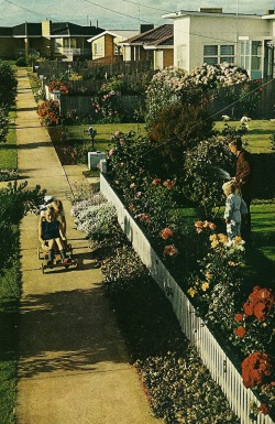 vintagenatgeographic:  Suburban street in Victoria, Australia National Geographic | February 1971