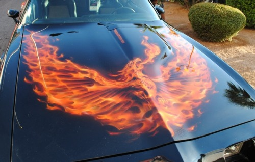 lwholmes:  Real flame Firebird hood art. I totally love this, If I had a second gen it would be hard not to be a copycat!