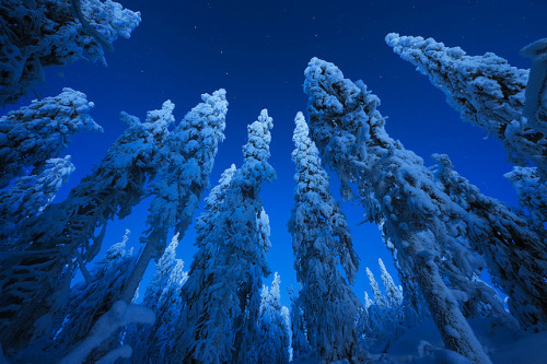 neptunesbounty:  Blue morning by Antti-Jussi Liikala on Flickr.