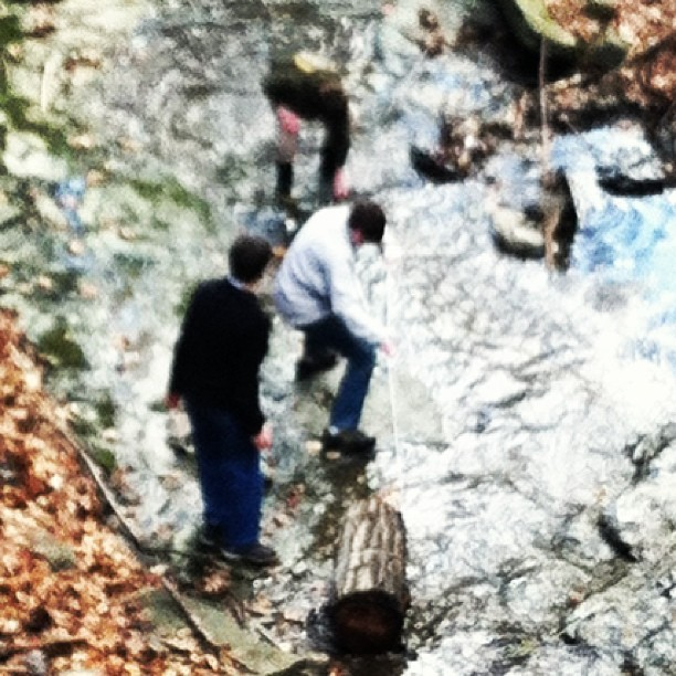 Boys trying to resurrect a log out of the creek. #engineering #marvel