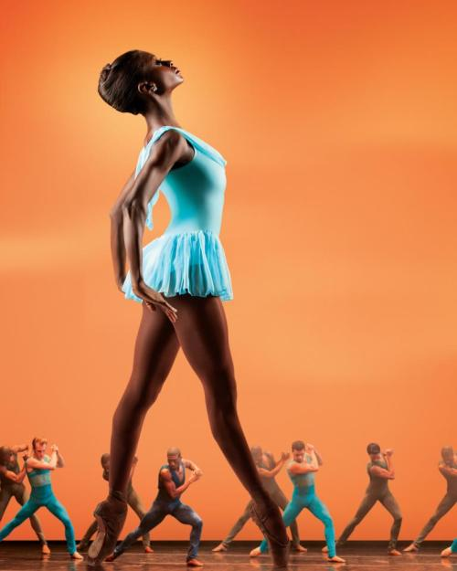 whatyouarecapableof:  Dance Theatre Of Harlem (image from their facebook page)  I love Dance Theatre of Harlem!!