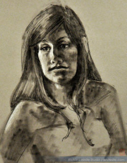 Study 1445  Pastel on toned paperby Richard White