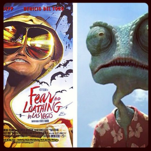 Is it bad that my kids know when the Hunter S. Thompson cameo is in Rango? #baddad #dadofgirls #rango #fearandloathing #transitionalmovies