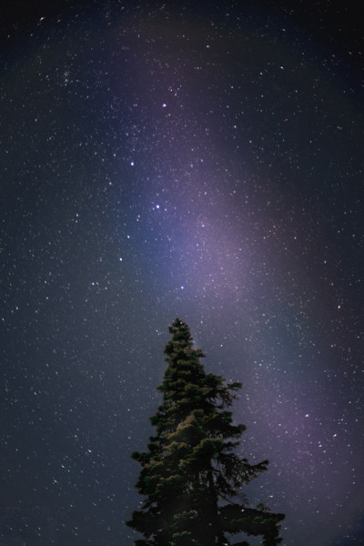 space-pics:  Went on a clear night to Whistler Olympic Park [OC] [624 X 936] http://space-pics.tumblr.com/