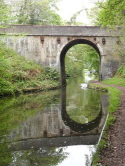 Canal Bridge reflected in the Shropshire Union Canal, Brewood, Staffordshire, England All Original Photography by http://vwcampervan-aldridge.tumblr.com