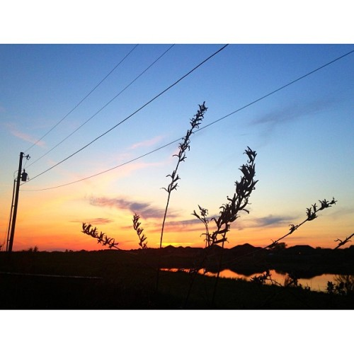 #power #majesty #nature #sky #sunset #silhouette #cameraplus #gradient #blue #hue #orange #black