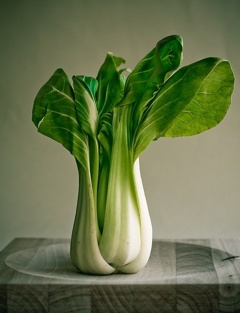 thevegetablemarket:  (via bok choy by Munduate, via Flickr | @The Farmer's Market)