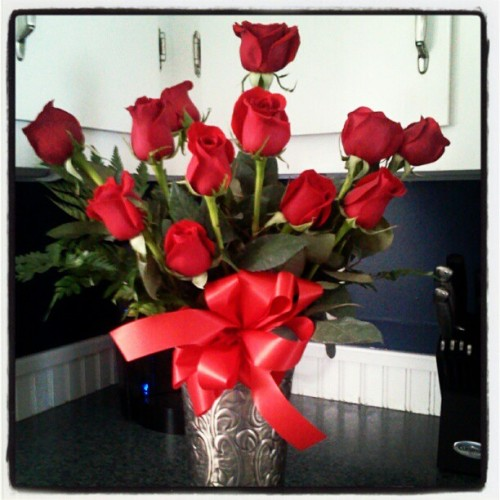 The most beautiful 12 roses on Earth; a surprise from my Valentine (at New Gloucester, Maine)
