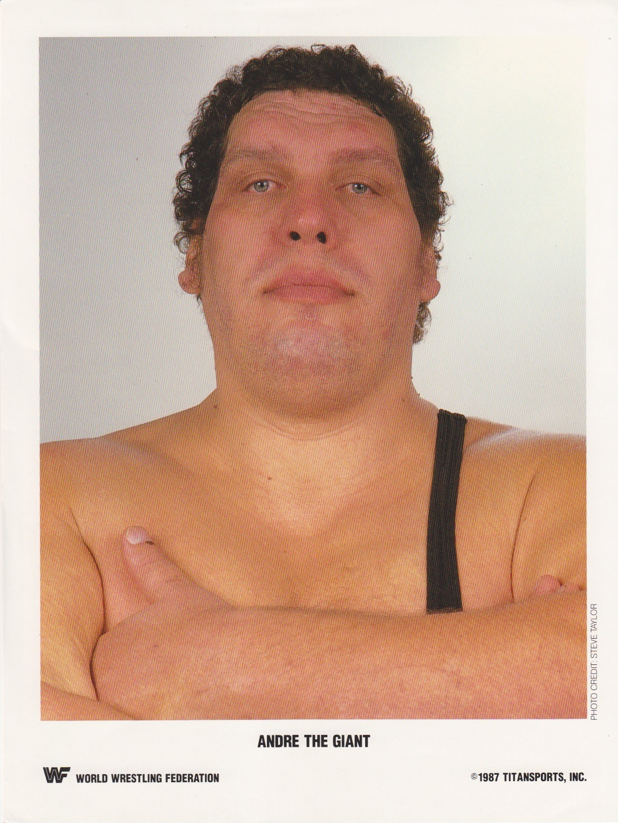 "André ""The Giant"" Roussimoff (May, 19 1946 – January, 27 1993)"