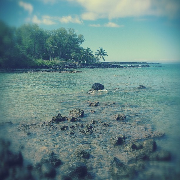 Snorkeling at Ahihi bay #maui