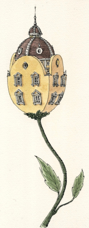 sweathome:  Mattias Adolfsson - House Flower, tulip.