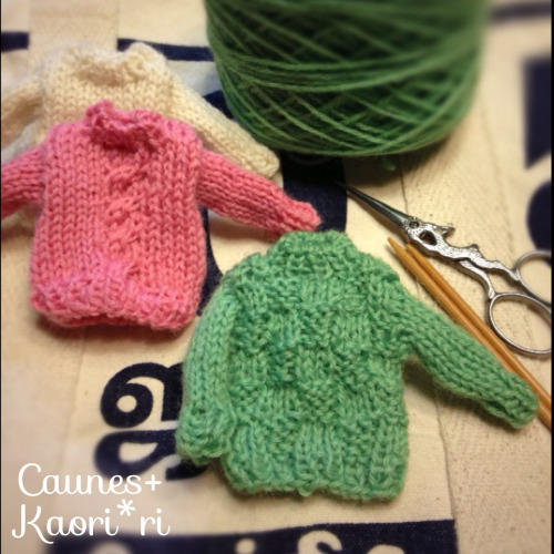 caunes-kaoriri:  Miniature sweater