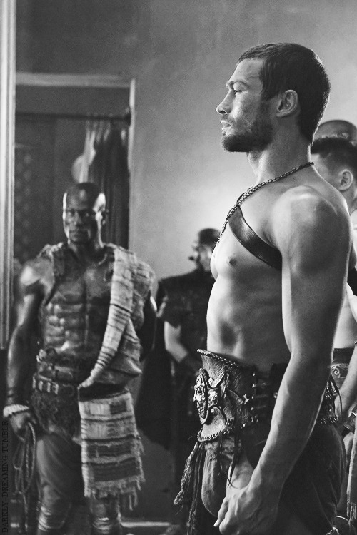 Spartacus, The Champion of Capua.