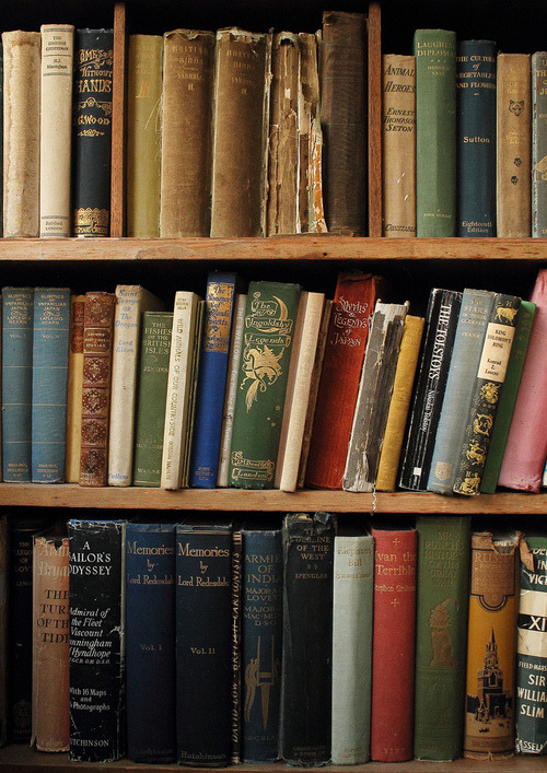 rainydaysandblankets:  old, weathered books. the best.