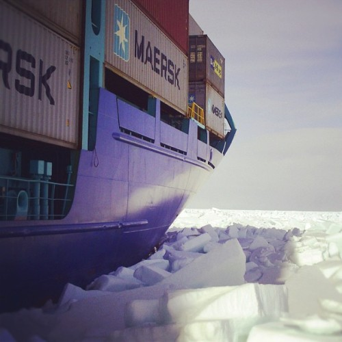 Maersk on Ice. In the Baltic Sea, near Saint Petersburg. #maersk #wintermaersk #ice  #container #vessel