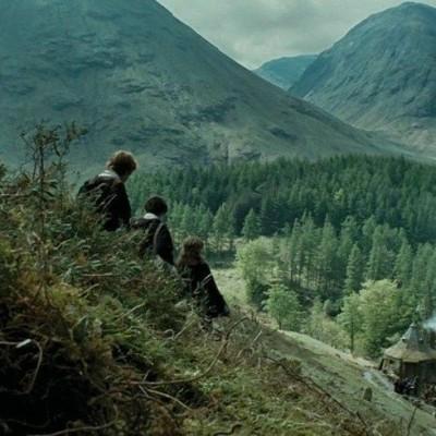 // #Harry Potter#Hermione Granger#Ron Weasley
