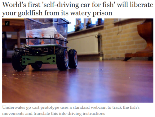 verylittlebird:  finally  Can't believe they didn't give it tracks and a little turret, and market it as a fish tank…