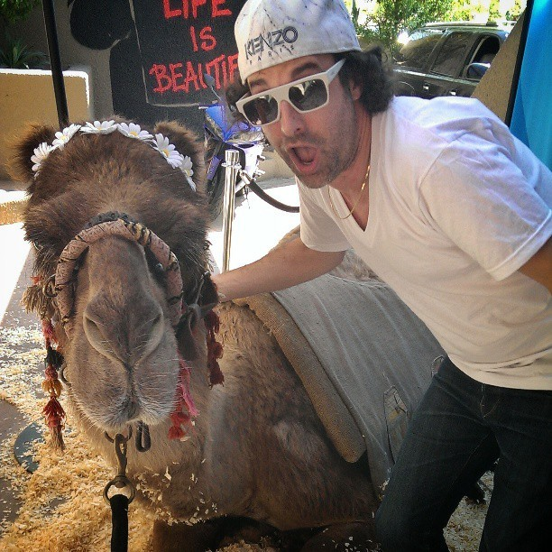#tbt chilling with a camel #Coachella  (at Palm Springs, CA)