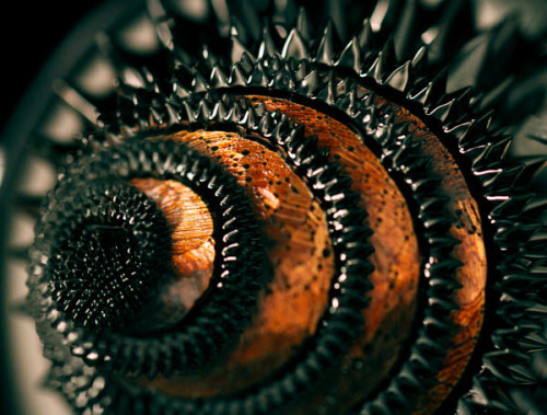 fuckyeahfluiddynamics:  Here a ferrofluid climbs a spiral steel structure sitting on an electromagnet. Magnetic field lines emanating from the sculpture's edges tend to push the ferrofluid out into long spikes—part of the normal field instability—but surface tension resists. The short, somewhat squat spikes we see are the balance struck between these opposing forces. Though known for their wild appearance, ferrofluids appear many in common applications, including hard drives, speakers, and MRI contrast agents. Researchers have also recently suggested they might help understand the behavior of the multiverse. (Photo credit: P. Davis et al.)