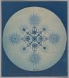 Pattern! Color! Via fishstickmonkey:[Frustules of Diatoms]  Artist: Attributed to Julius Wiesner (Austrian, 1838–1916) Date:ca. 1870 Medium:Cyanotype Dimensions:9.8 x 7.9 cm (3 7/8 x 3 1/8 in.)Metropolitan Museum of Art