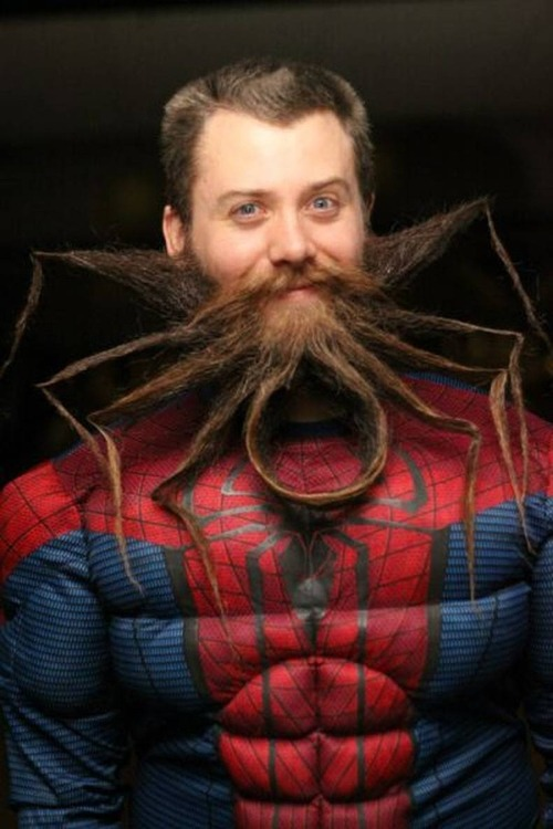 Spider beard, spider beard, does whatever a spider beard can, spins a web, with his beard, catches food, in his beard, look ooooooout….here is a spider beeeeeeaaaaaaaaard!!!! This was suggested by too many people to name. Loooove xx