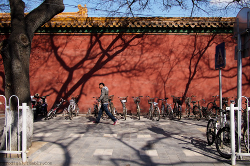 Red wall Streets around the Forbidden City, Beijing