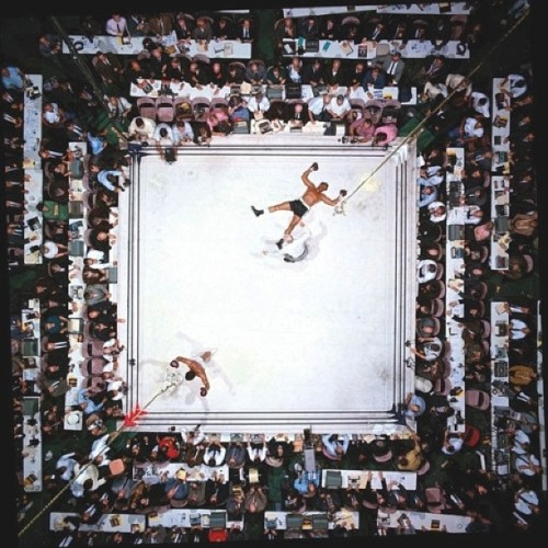 Found this pretty cool #boxing match from above! #photography