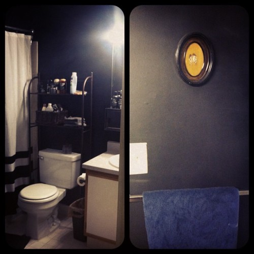 lunarphases:  Bathroom is finally done. Tomorrow we'll add some more decorative items including a deer skull!