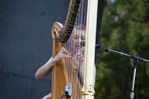 Joanna Newsom at this year's Pitchfork Music Festival. Photo by Jason Bergman.