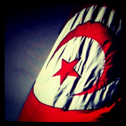 In honor of #tunisia #independenceday #20march