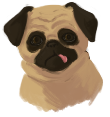 I drew a pug for Pietepiet, because I'm bored.