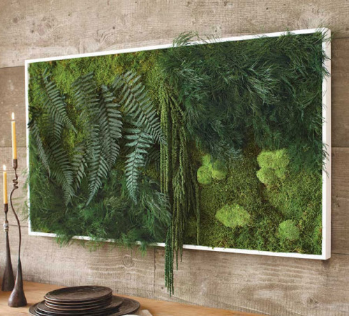 (via Fern And Moss Wall Art | Well Done Stuff !)