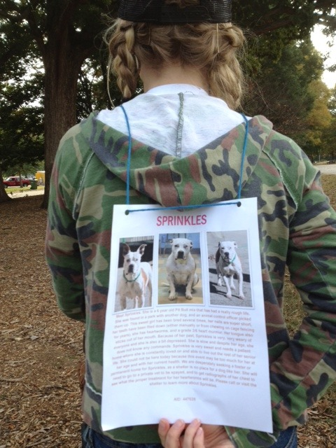 Advocate and friend posted a flyer on her back to show her support for Sprinkles, a dog in Fulton County Animal Services that needed help. This photo was taken at Atlanta's First Bully Breed March held in Oct 2012, at Piedmont Park. My group, Stubby's Heroes, organized the event. I'm happy to report that shortly thereafter, Sprinkles was saved by Atlanta Bully Rescue and is on her foster home where she is waiting to be adopted and living with resident dogs.