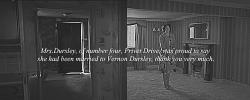 harry potter petunia dursley vernon dursley fudgeflies sphgraphic whoops i upset myself