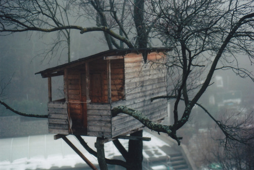 cabinporn:  Treehouse in Vienna, Austria.Submitted by Andrei Jafarau.