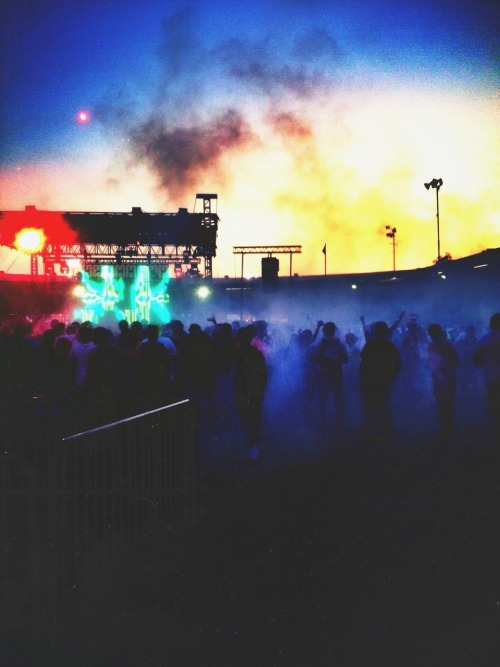 smvsh:  smvsh:  smokey during seven lions & the sunset *^ω^*~  missin this rn