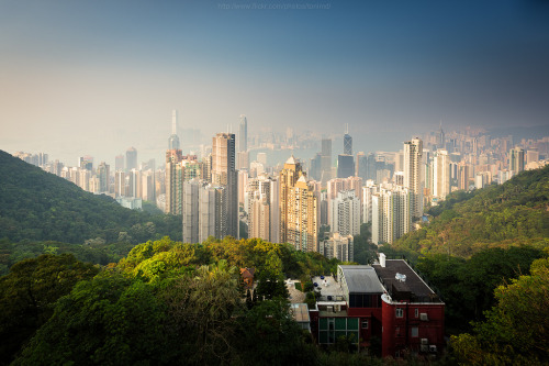 warborne:  Foggy day in Hongkong (by : : T O N I : :)